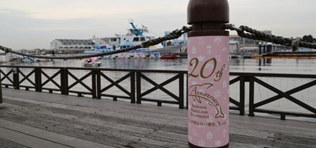 シロイルカに触ってふれあえる八景島シーパラダイス