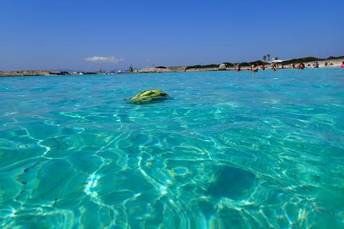 離島ならではの美しい海に囲まれ...