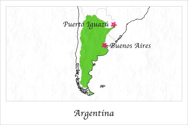 アルゼンチンで使ったお金